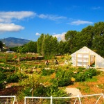 The Salida School Gardens