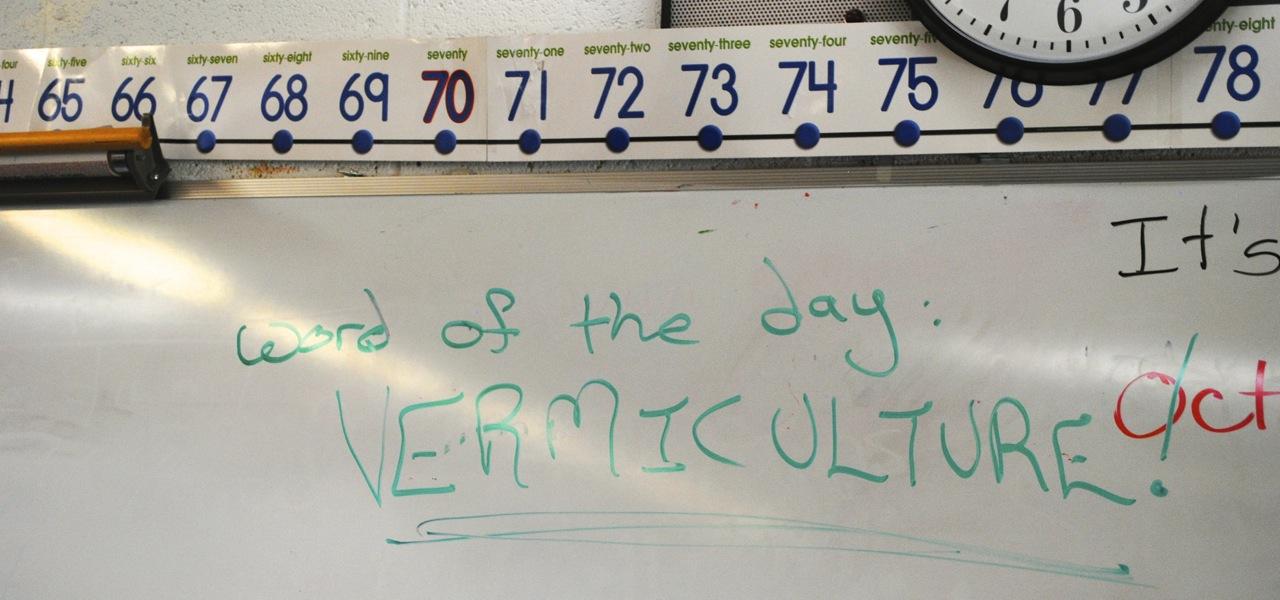 Guidestone in the classroom.