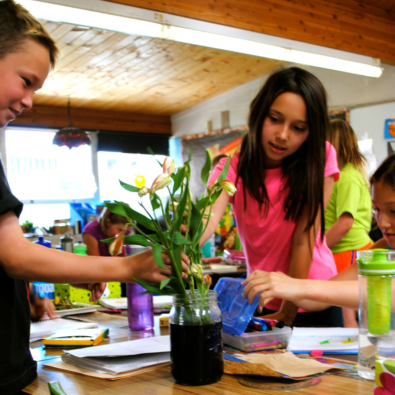 Earth Week plant parts lesson in the classroom.