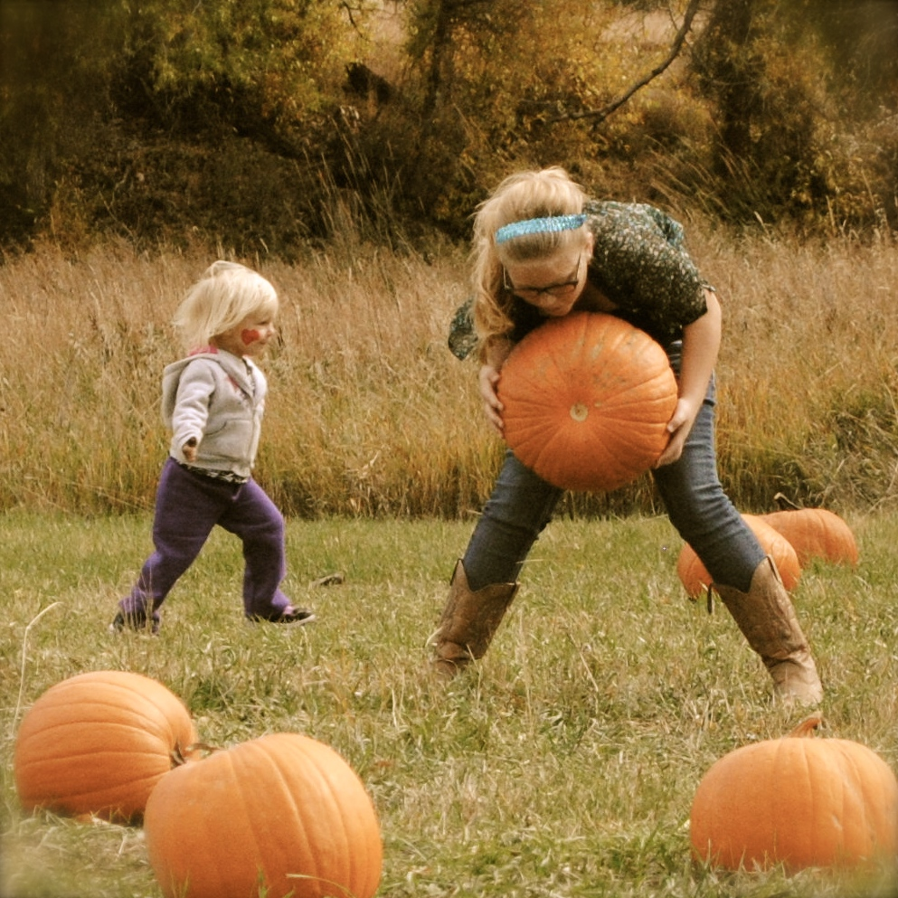 kids picking out pumpkins