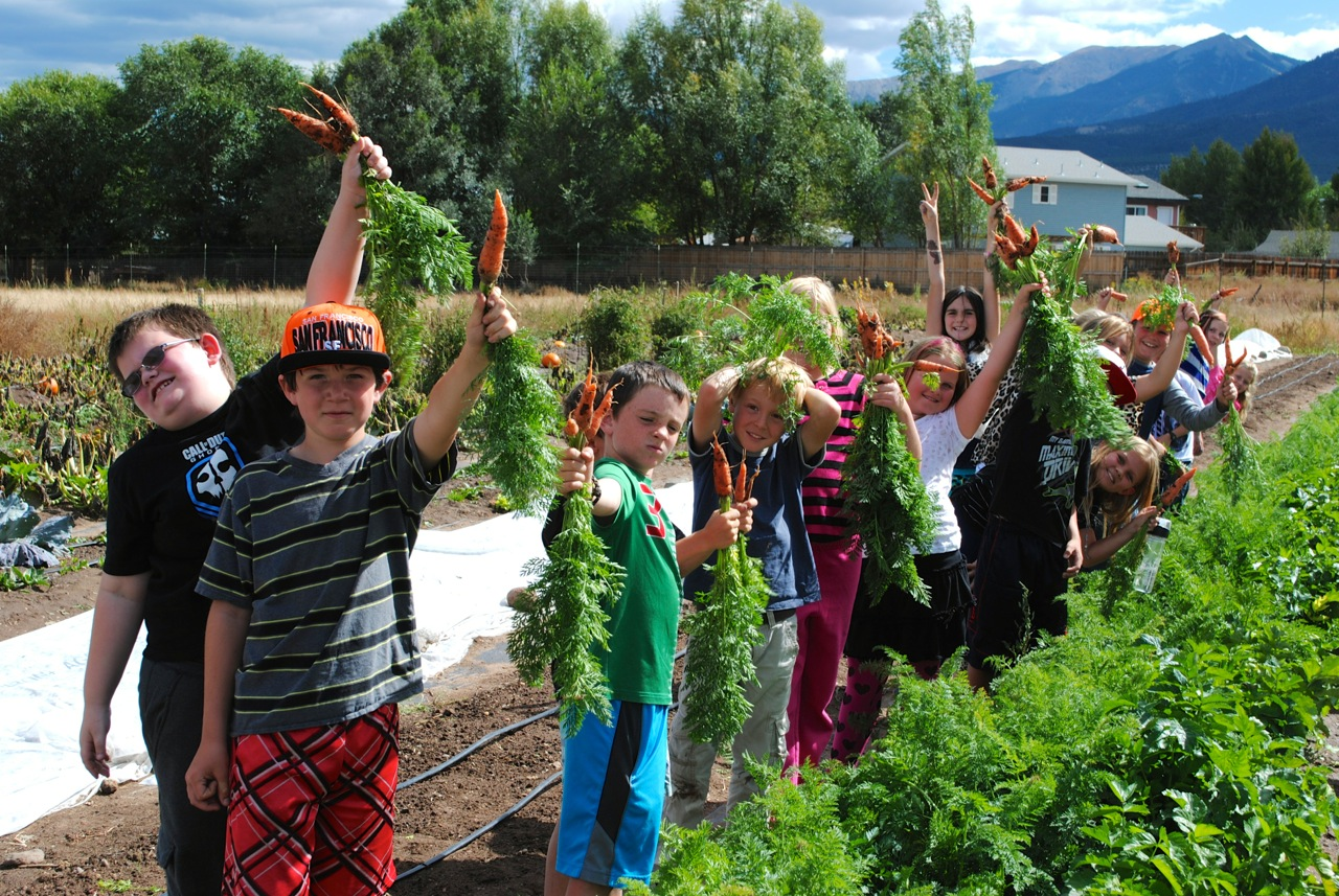 Longfellow Elementary students harvest carrots that will go in their school lunches.